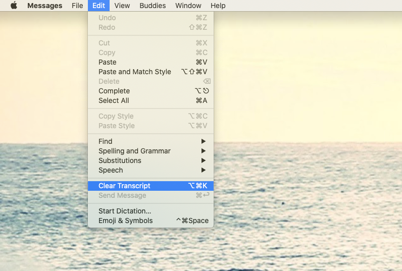 clear transcript iMessage Mac