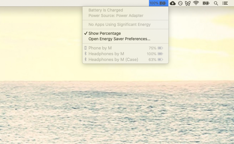 Batteries menu bar Mac level
