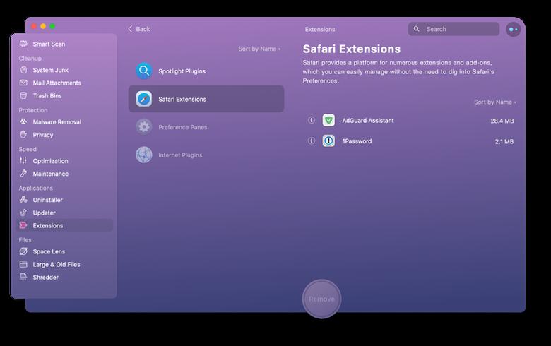 manage Safari extensions