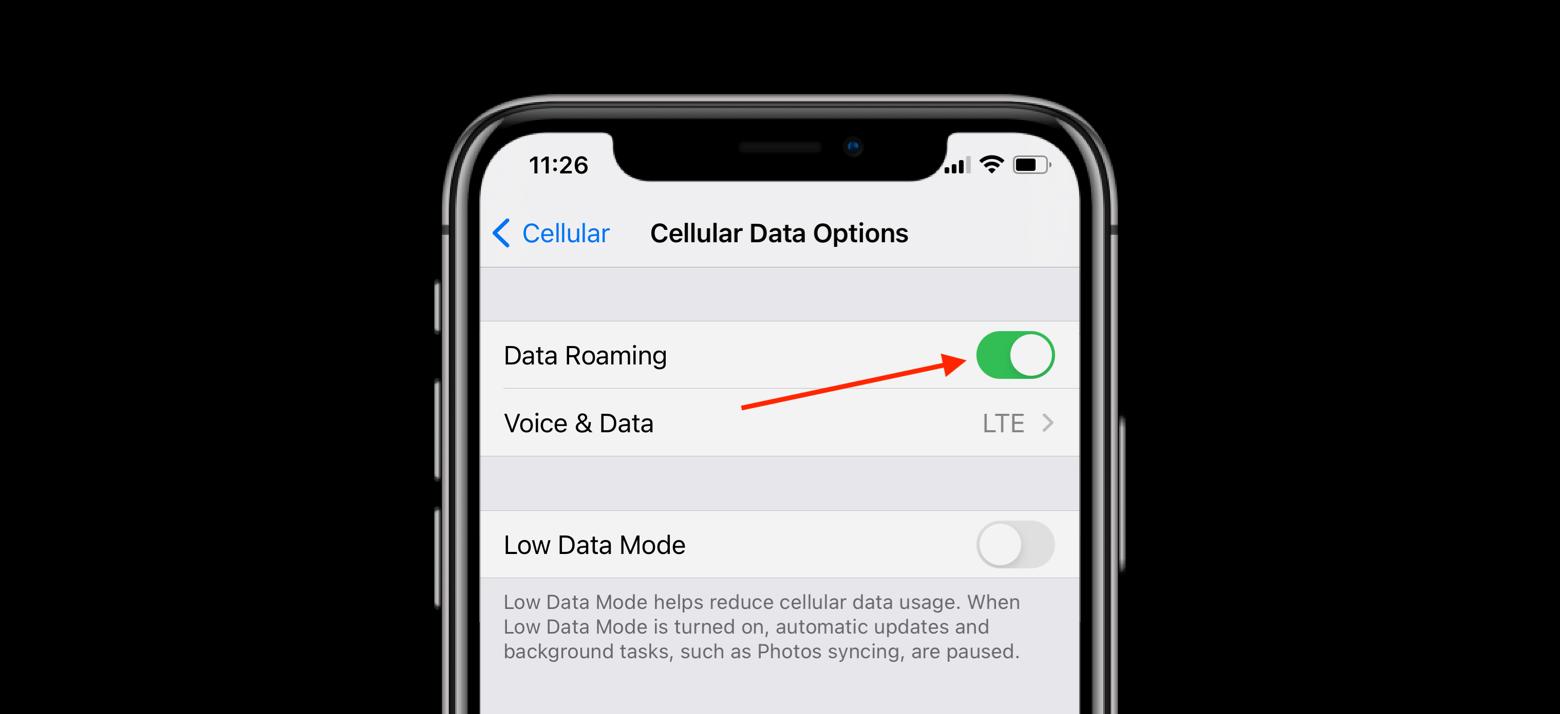 data roaming ios
