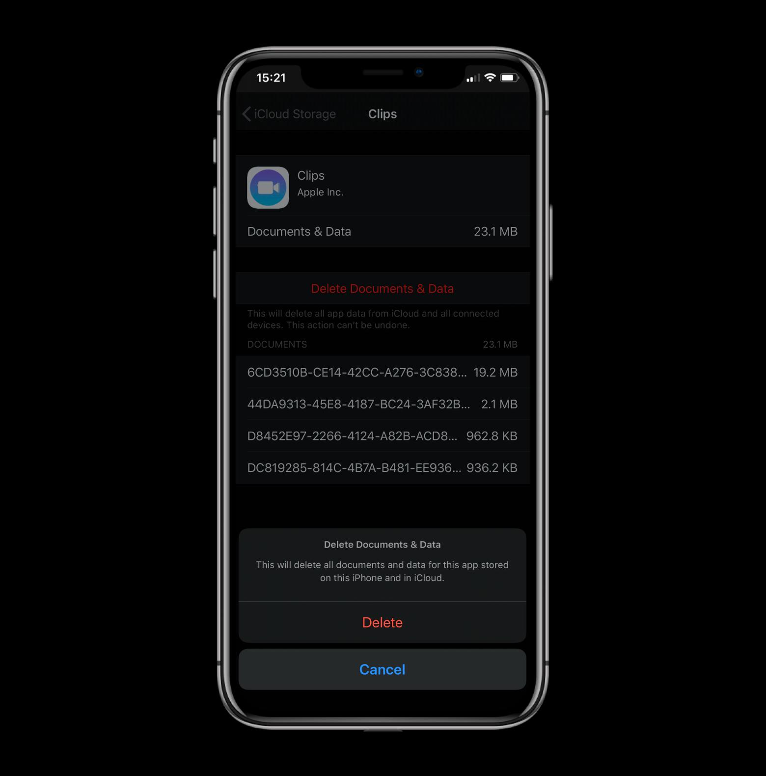 delete app data iphone ipad