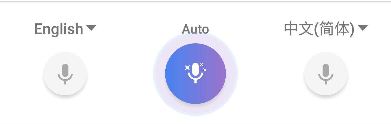 google translate conversation
