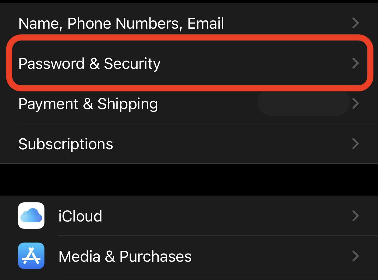 iphone password security