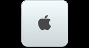 Mac Mini (2010 and later)