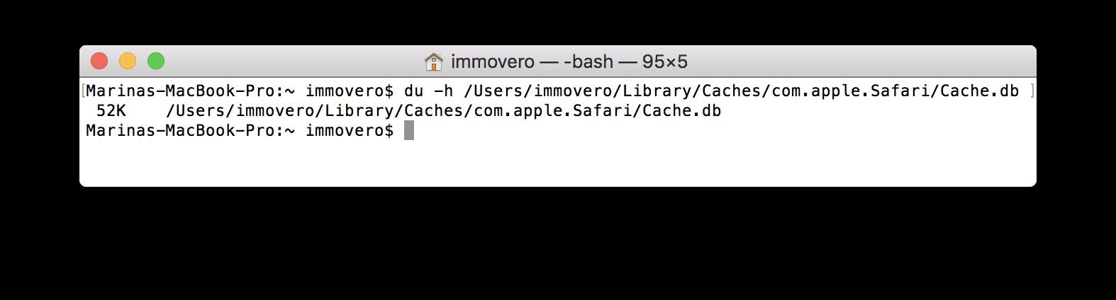 Clean cache in Safari