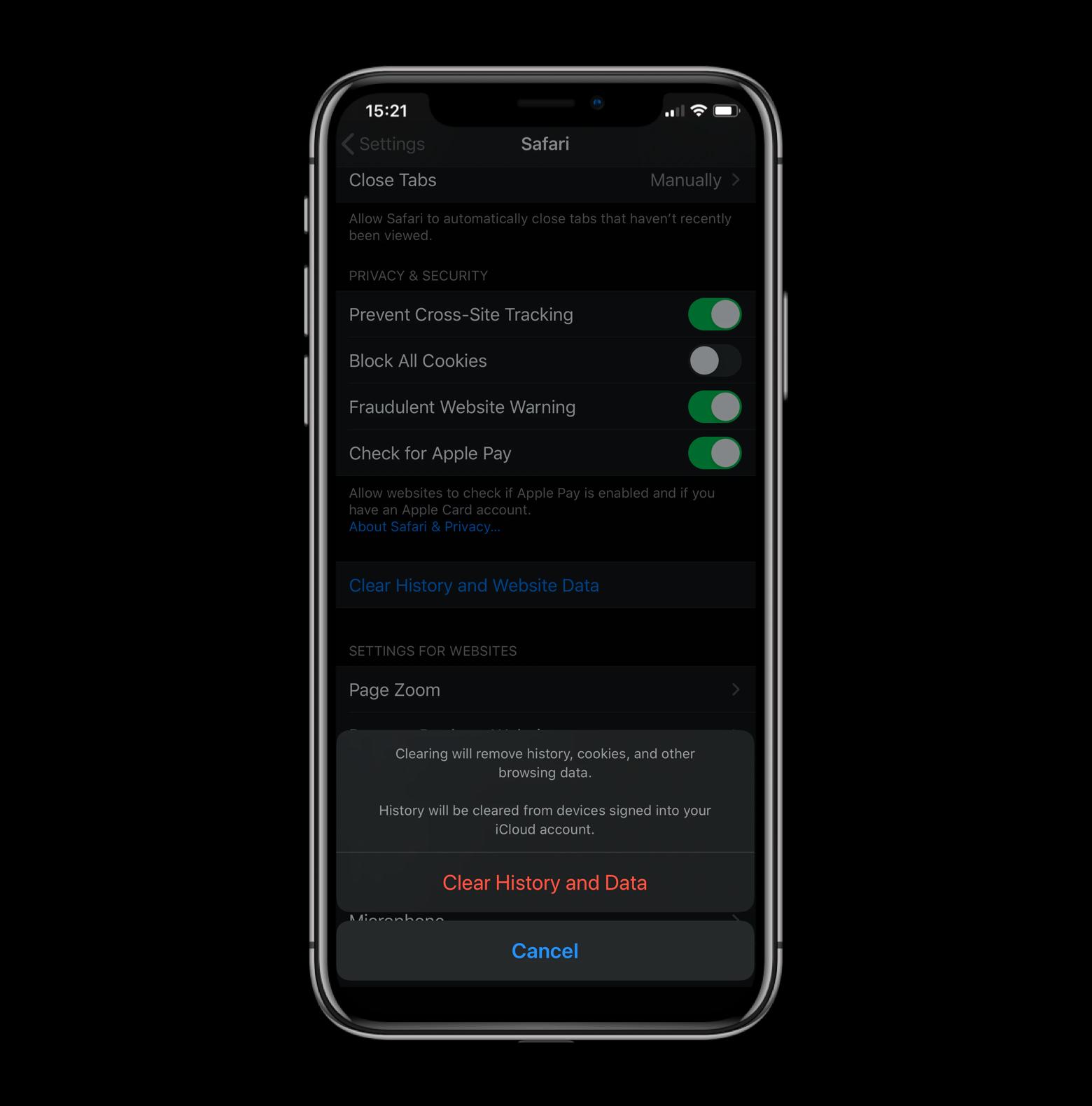 clear cache iphone ipad safari