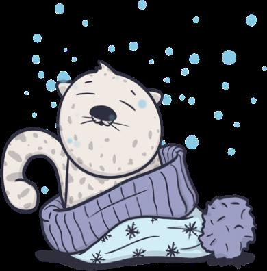 snow leopard os x