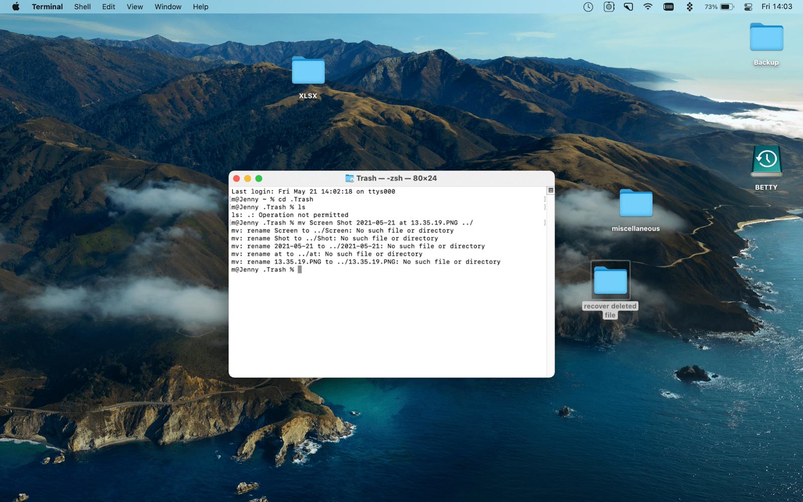 recovery files via terminal