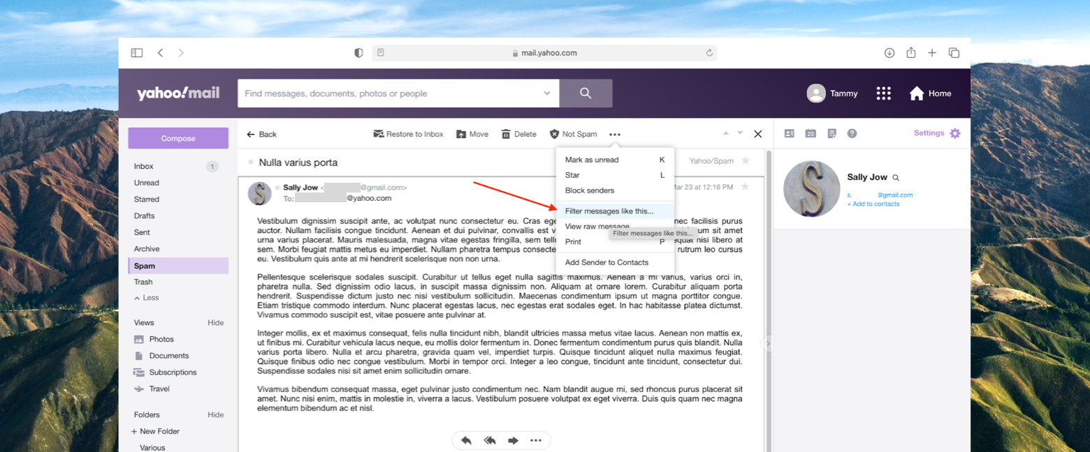 Use filters to organize Yahoo Mail