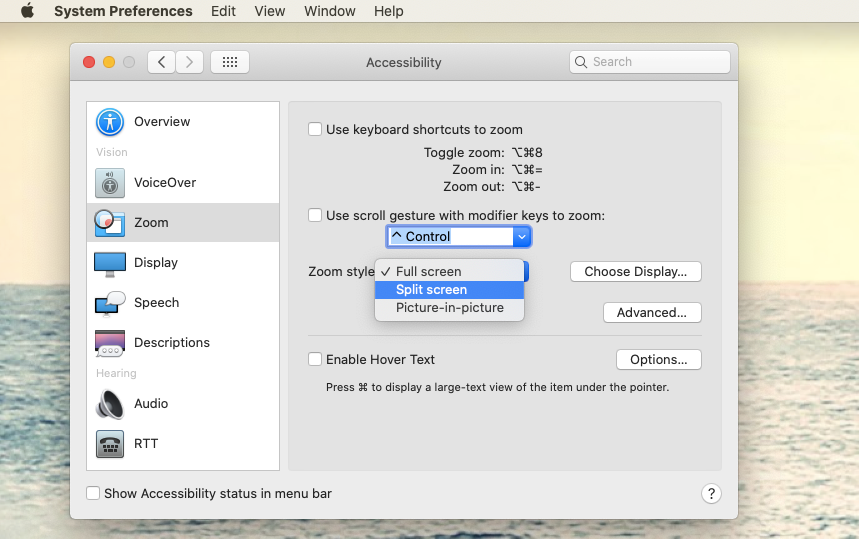 zoom style Mac accessibility